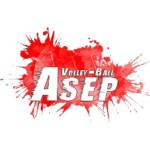 Logo du spot 81 - Puylaurens - Puylaurens volley-ball