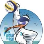 Logo du spot 30 – Le-Grau-du-roi – Plage des Mouettes
