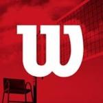 Logo du spot Wilson volleyball