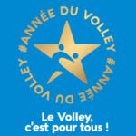 Logo du spot L'Année du Volley