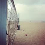 Logo du spot US - 90292 - Venice - Beach Volley Ball Court