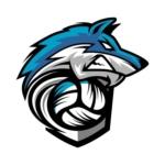 Logo du spot 28 - Nogent Le Roi - ESN Volley-Ball Nogent Le Roi
