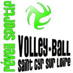Logo du spot 45 – Saint Cyr en Val - Alerte Saint Cyr en Val volley-ball